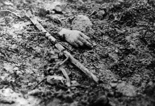 100 años primera guerra mundial pucelaproject