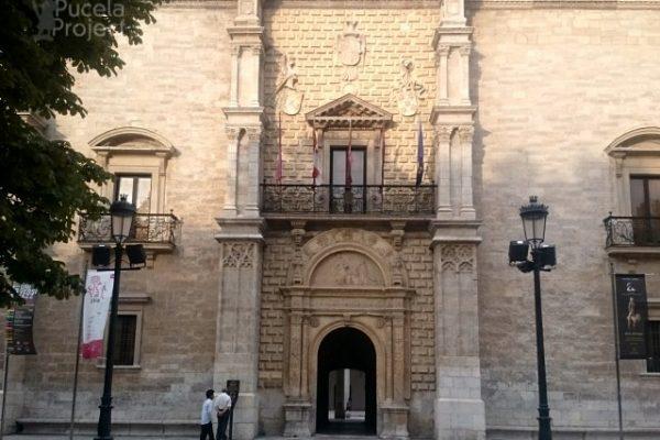 Palacio Santa Cruz Pucelaproject