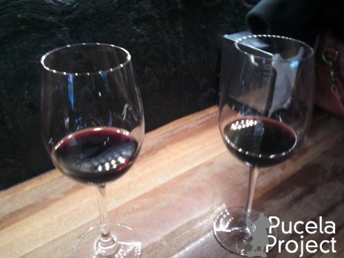 catas museo del vino pucelaproject