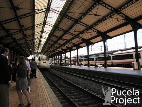 El tren playero se puede tomar en la Estación Norte - Valladolid Campo Grande